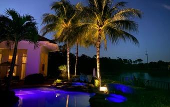 Premier Landscape Architectural Lighting Company in Palm Beach, FL