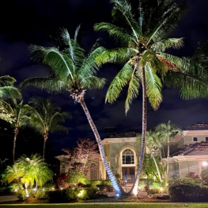 Residential Landscape Lighting Design in Jupiter, FL